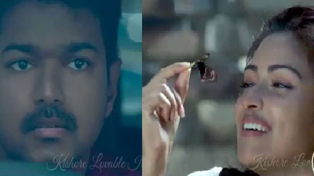 Cute Love Song _ Thalapathy Vijay Version _ Whatsapp Status Download