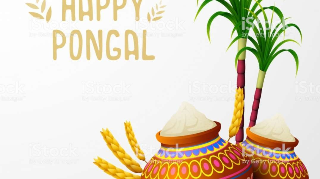Pongal Whatsapp Status Song | Tamil Whatsapp Status Song for Pongal | Thai Pongal