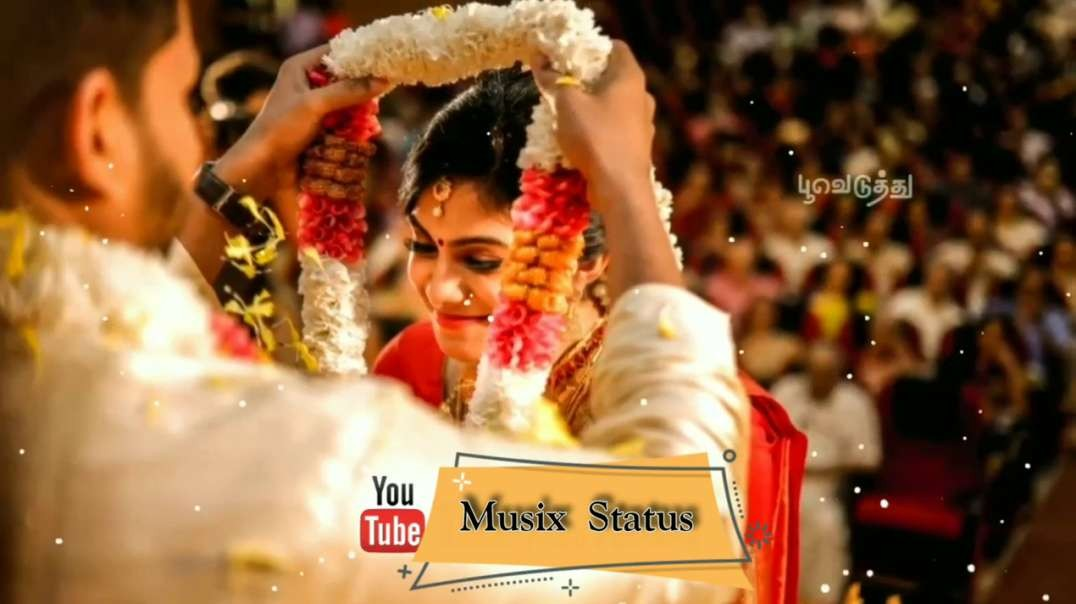 Tamil Super Hit Melody Status Video - Couple WhatsApp Status Video