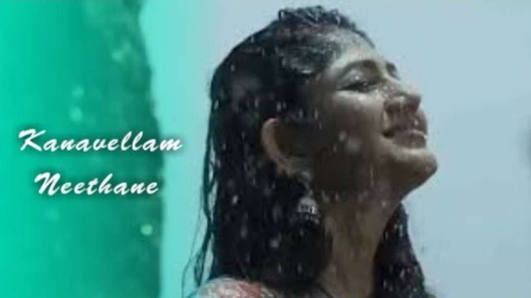 Kanavellam_Neethane_|_whatsapp_status