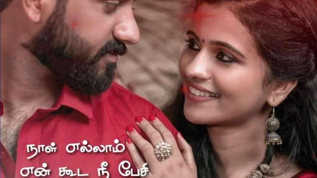 Sevanthi Poovukkum Thenpandi kaatrukkum WhatsApp Status  | Tamil Love Status