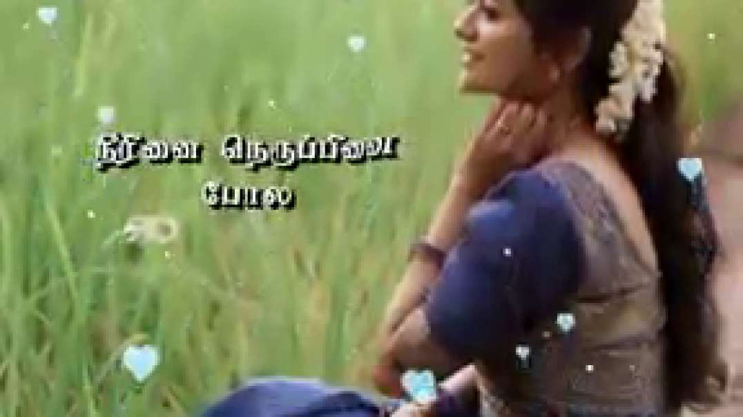 Ragasiyamaanadhu kaadhal song | WhatsApp status Tamil | female version song status